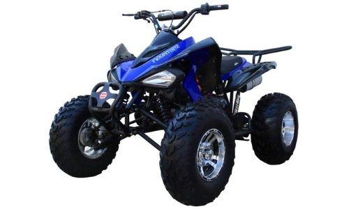 175CC Fully Automatic Full-Sized ATV